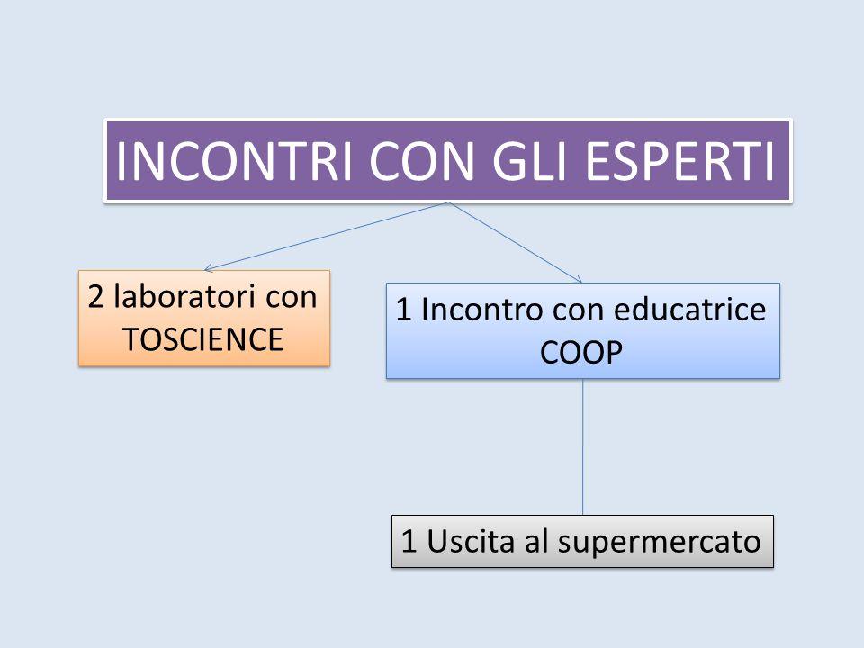 INCONTRI CON GLI ESPERTI 2 laboratori con TOSCIENCE 2 laboratori con TOSCIENCE 1 Incontro con educatrice COOP 1 Incontro con educatrice COOP 1 Uscita