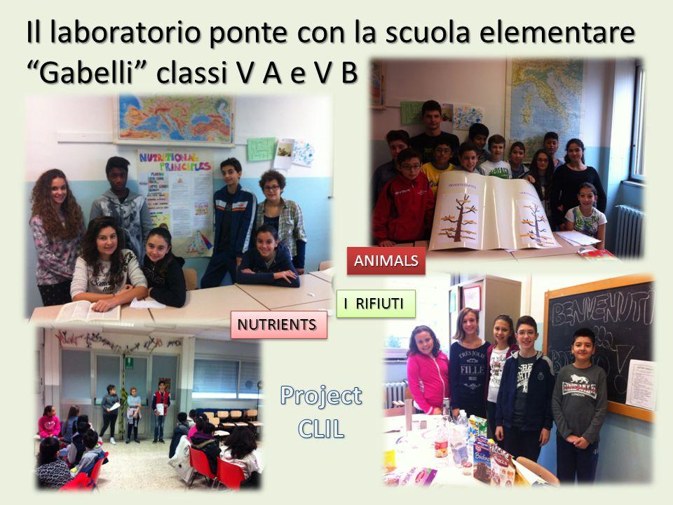 """Il laboratorio ponte con la scuola elementare """"Gabelli"""" classi V A e V B ANIMALSANIMALS I RIFIUTI NUTRIENTSNUTRIENTS"""