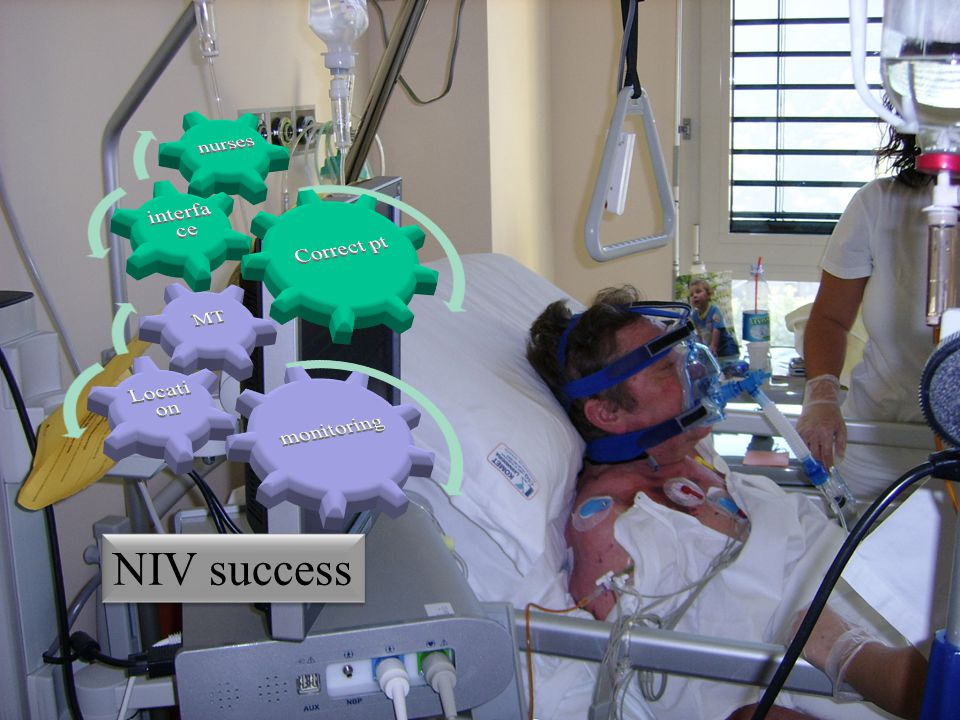 NIV success