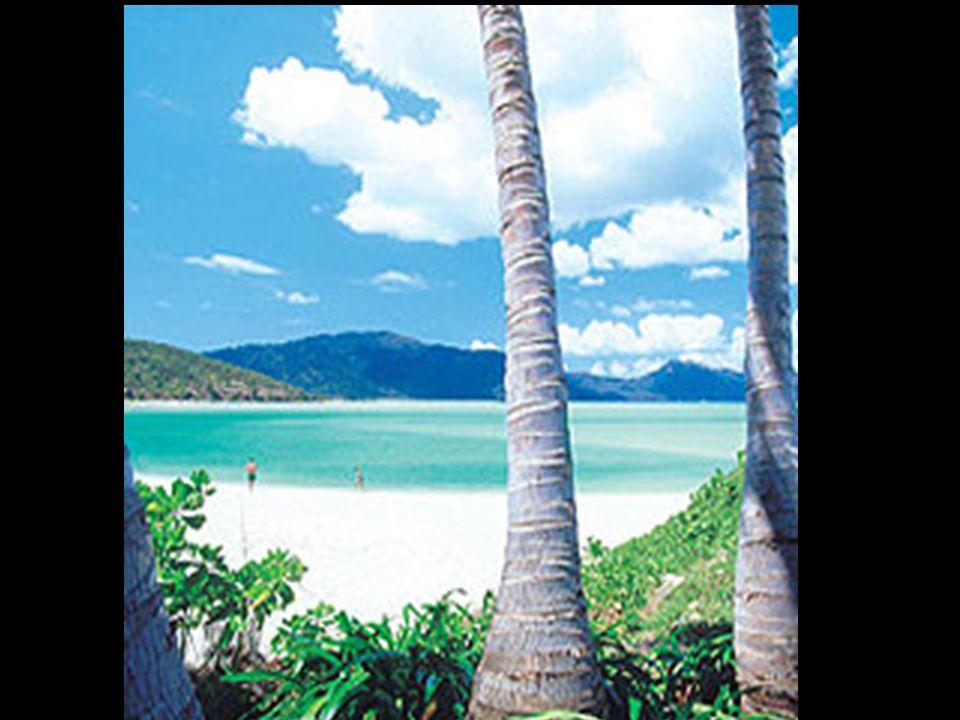 22 – 26 settembre 2006 - Hayman Island