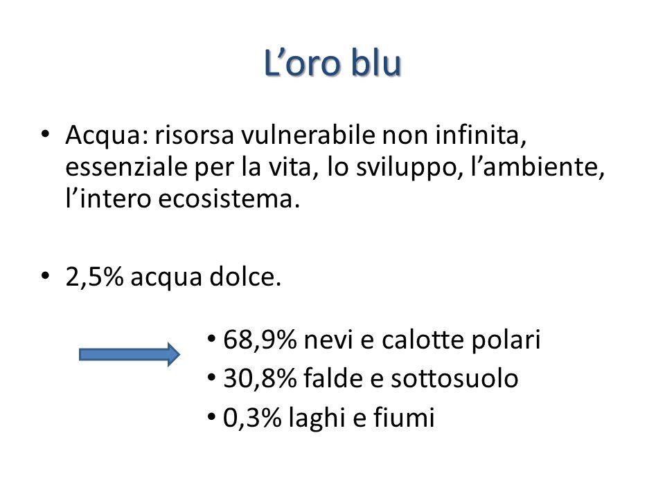 L'oro blu Acqua: risorsa vulnerabile non infinita, essenziale per la vita, lo sviluppo, l'ambiente, l'intero ecosistema. 2,5% acqua dolce. 68,9% nevi