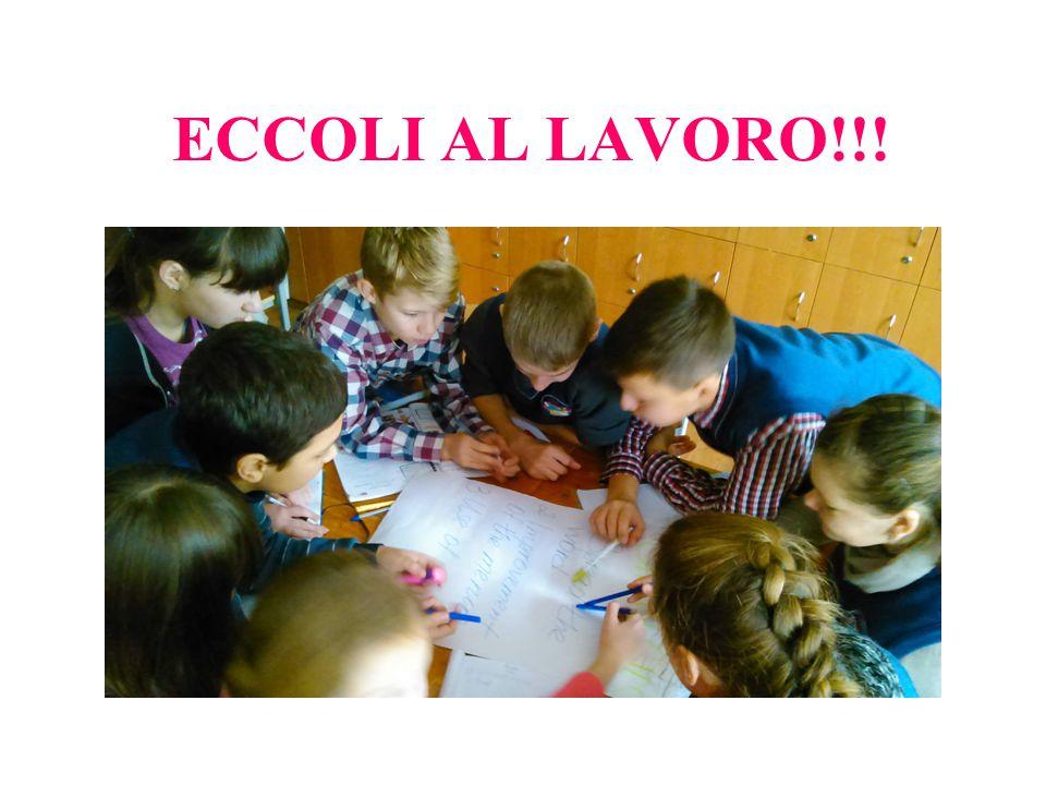 ECCOLI AL LAVORO!!!