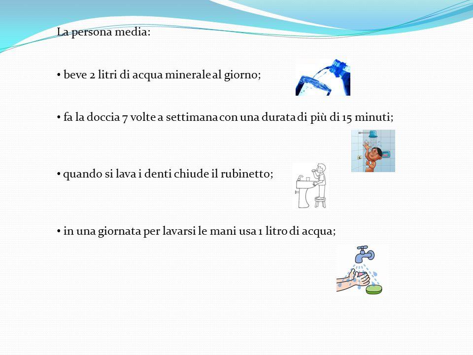 La persona media: beve 2 litri di acqua minerale al giorno; fa la doccia 7 volte a settimana con una durata di più di 15 minuti; quando si lava i dent