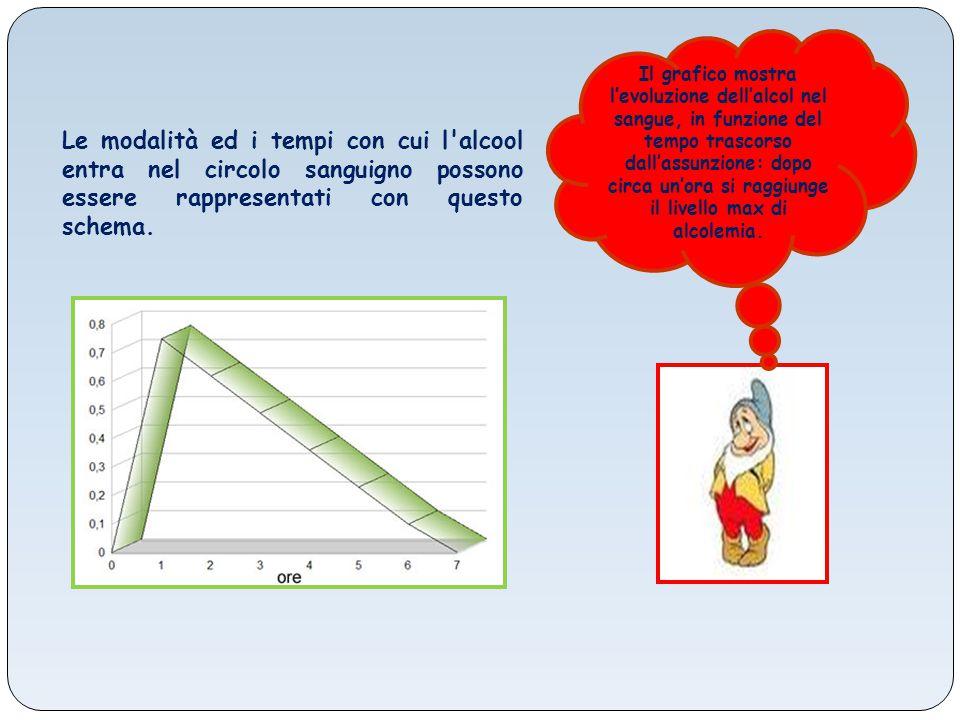 Il grafico mostra l'evoluzione dell'alcol nel sangue, in funzione del tempo trascorso dall'assunzione: dopo circa un'ora si raggiunge il livello max d
