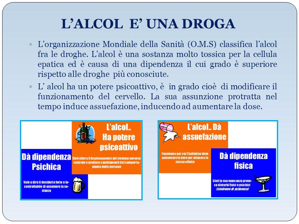 L'ALCOL E' UNA DROGA L'organizzazione Mondiale della Sanità (O.M.S) classifica l'alcol fra le droghe. L'alcol è una sostanza molto tossica per la cell