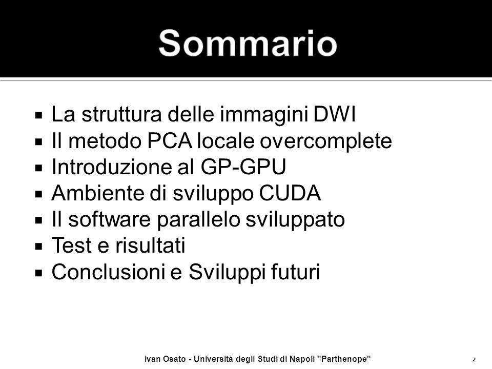  La struttura delle immagini DWI  Il metodo PCA locale overcomplete  Introduzione al GP-GPU  Ambiente di sviluppo CUDA  Il software parallelo svi