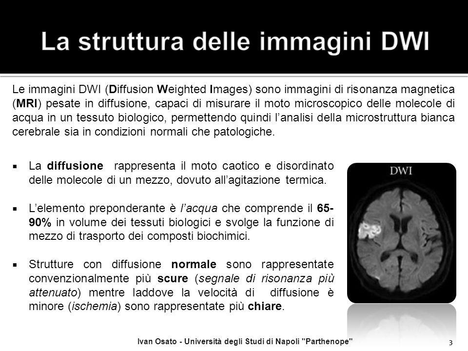  Il più recente sviluppo della DWI è rappresentato dall'imaging in tensore di diffusione (Diffusion Tensor Imaging, DTI), che è una tecnica che mette in evidenza non soltanto l'entità della diffusione delle molecole di acqua nei tessuti ma anche la direzione consentendo di superare i limiti di direzionalità di DWI.