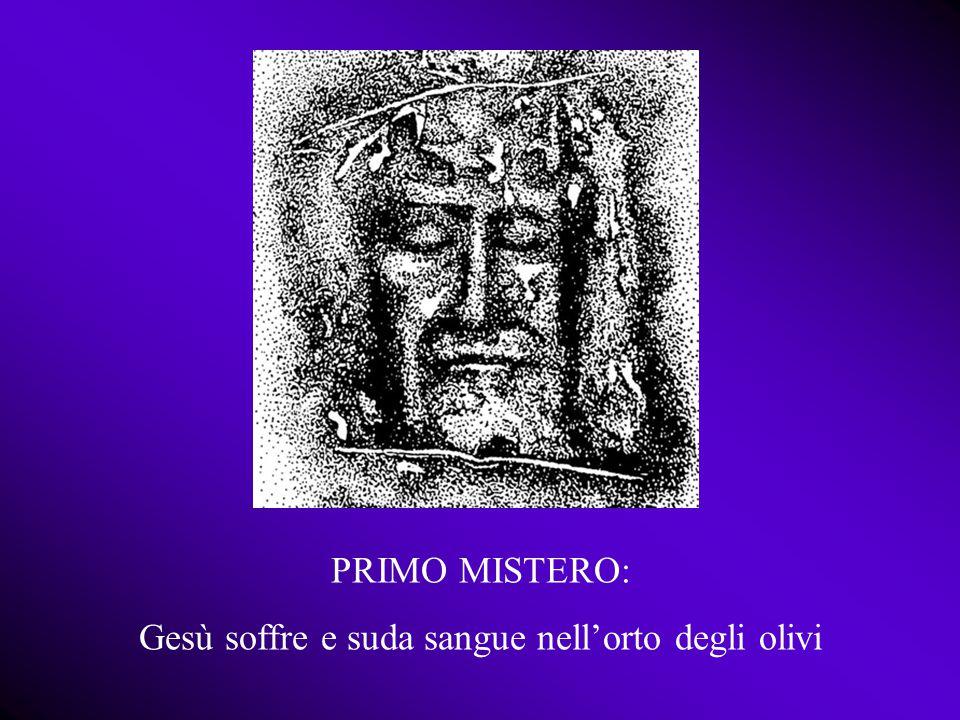 PRIMO MISTERO: Gesù soffre e suda sangue nell'orto degli olivi