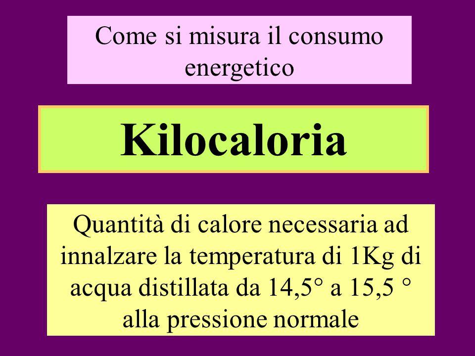 Come si misura il consumo energetico Kilocaloria Quantità di calore necessaria ad innalzare la temperatura di 1Kg di acqua distillata da 14,5° a 15,5 ° alla pressione normale