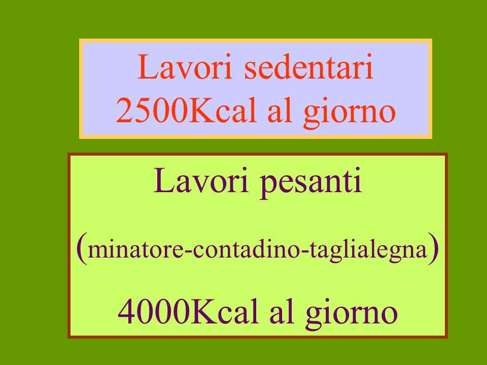 Lavori sedentari 2500Kcal al giorno Lavori pesanti ( minatore-contadino-taglialegna ) 4000Kcal al giorno