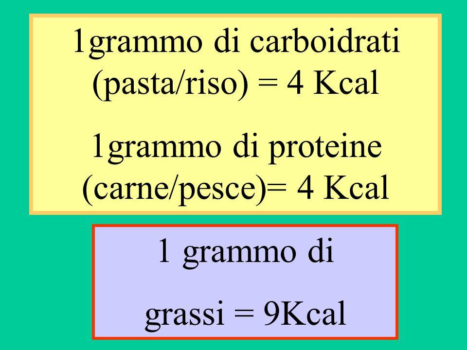 1grammo di carboidrati (pasta/riso) = 4 Kcal 1grammo di proteine (carne/pesce)= 4 Kcal 1 grammo di grassi = 9Kcal