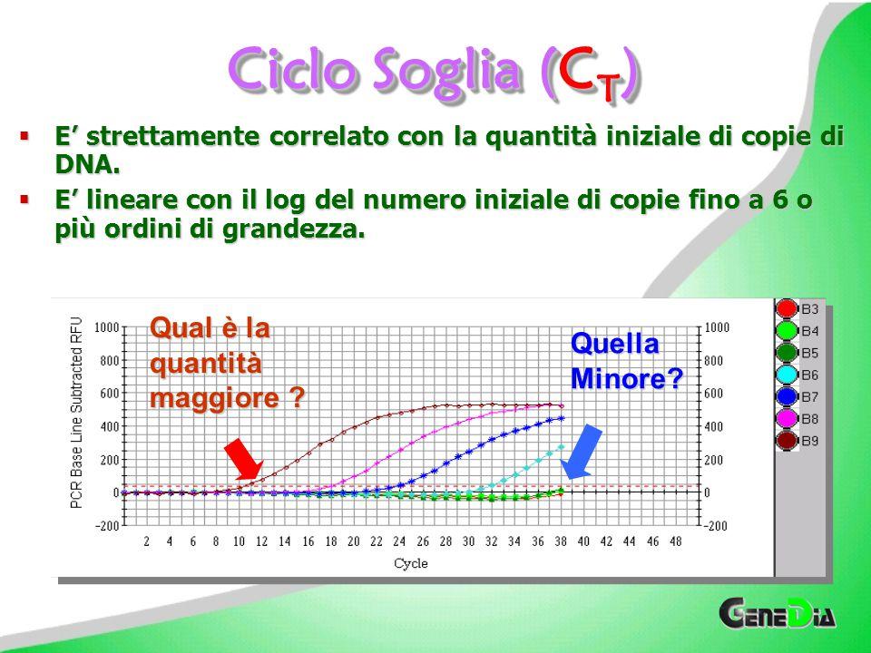 Che cos'è il Ciclo Soglia (C T )? CTCTCTCT Il Ciclo Soglia (CT) è il ciclo della Reazione di Amplificazione in corrispondenza del quale il segnale di