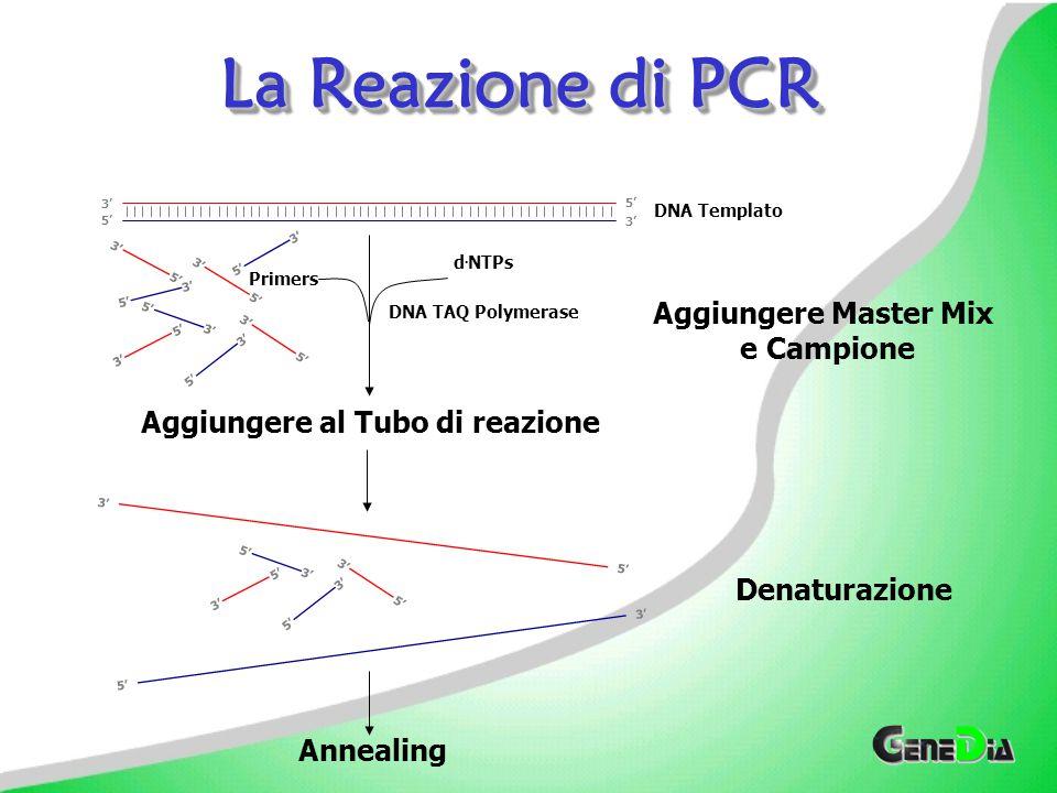 Curva di Dissociazione Eseguire una Curva di Dissociazione alla fine di un esperimento di Real Time PCR in cui si utilizza SYBR green, consente di vedere se è presente una sorgente non specifica di fluorescenza nella PCR.Eseguire una Curva di Dissociazione alla fine di un esperimento di Real Time PCR in cui si utilizza SYBR green, consente di vedere se è presente una sorgente non specifica di fluorescenza nella PCR.