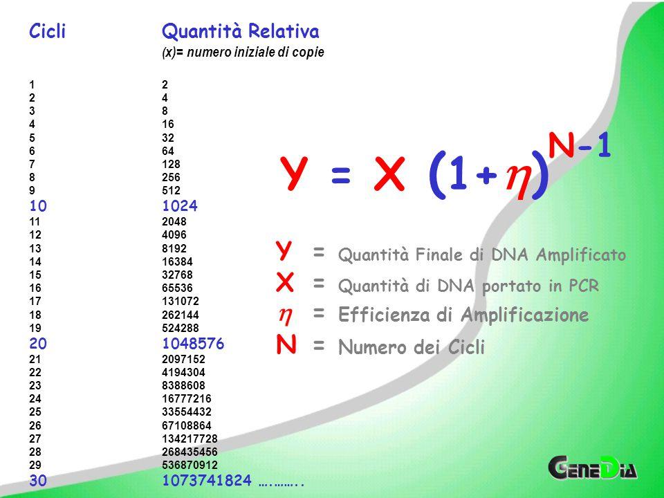 Il Ciclo Soglia C T è un indicatore del numero iniziale di copie.