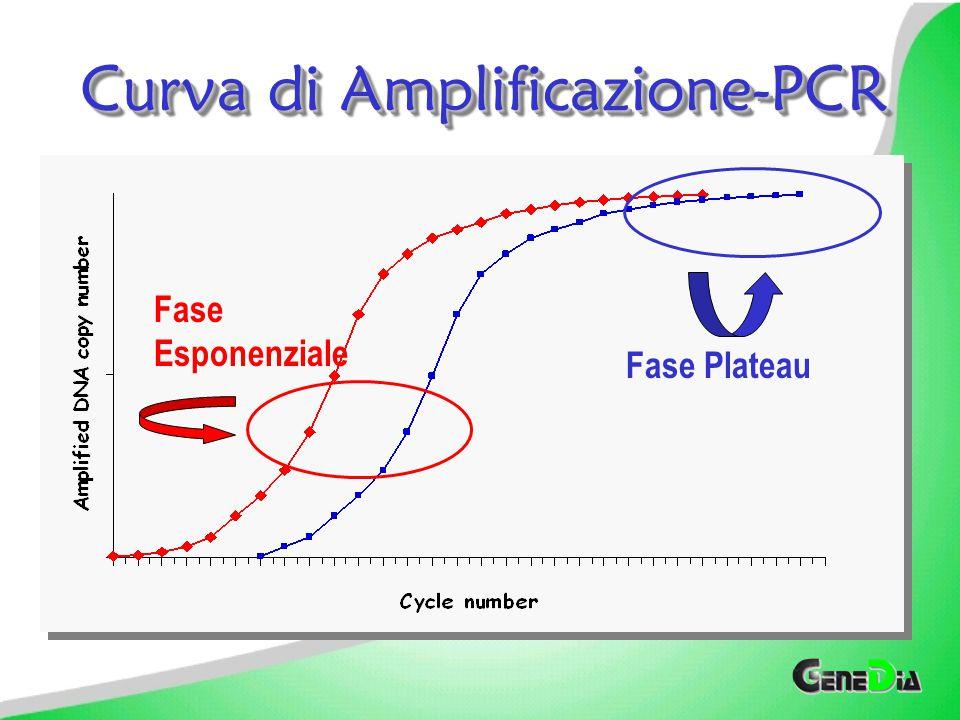 Curva di Amplificazione-PCR Incremento Esponenziale segue quello Lineare Incremento Esponenziale segue quello Lineare Incremento Esponenziale Limitato Incremento Esponenziale Limitato Plateau Plateau Il plateau non è correlato alla quantità iniziale di DNA Il plateau non è correlato alla quantità iniziale di DNA Cicli # TeoricoReale Log.