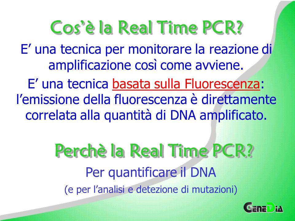 IntercalantiIntercalanti Russ Higuchi ha dimostrato il principio chiave della Real Time PCR usando Bromuro di Etidio EtBr emette fluorescenza fino a 25 volte quando si lega al dsDNA Il SYBR Green, un intercalante più sensibile, fornisce un approccio maggiormente interessante SYBR Green emette fluorescenza fino a 200 volte quando si lega al dsDNA