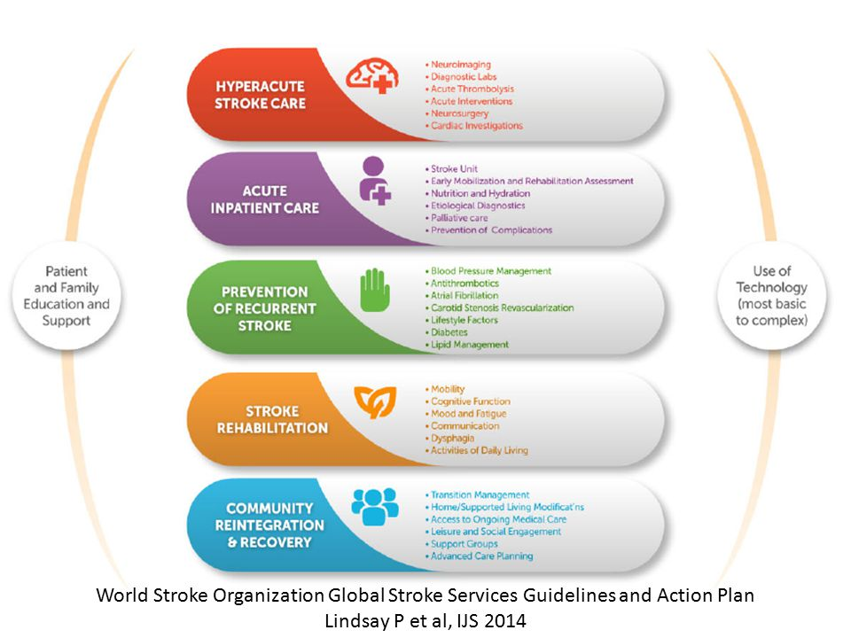 World Stroke Organization Global Stroke Services Guidelines and Action Plan Lindsay P et al, IJS 2014