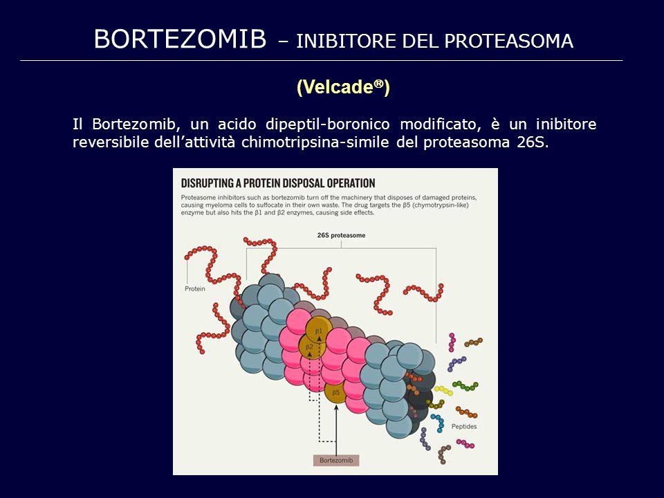 BORTEZOMIB – INIBITORE DEL PROTEASOMA Il Bortezomib, un acido dipeptil-boronico modificato, è un inibitore reversibile dell'attività chimotripsina-sim