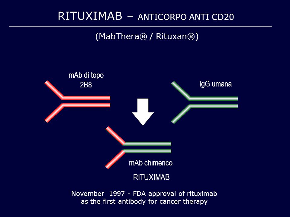 RITUXIMAB – ANTICORPO ANTI CD20 November 1997 - FDA approval of rituximab as the first antibody for cancer therapy mAb di topo 2B8 mAb chimerico RITUXIMAB IgG umana (MabThera® / Rituxan®)