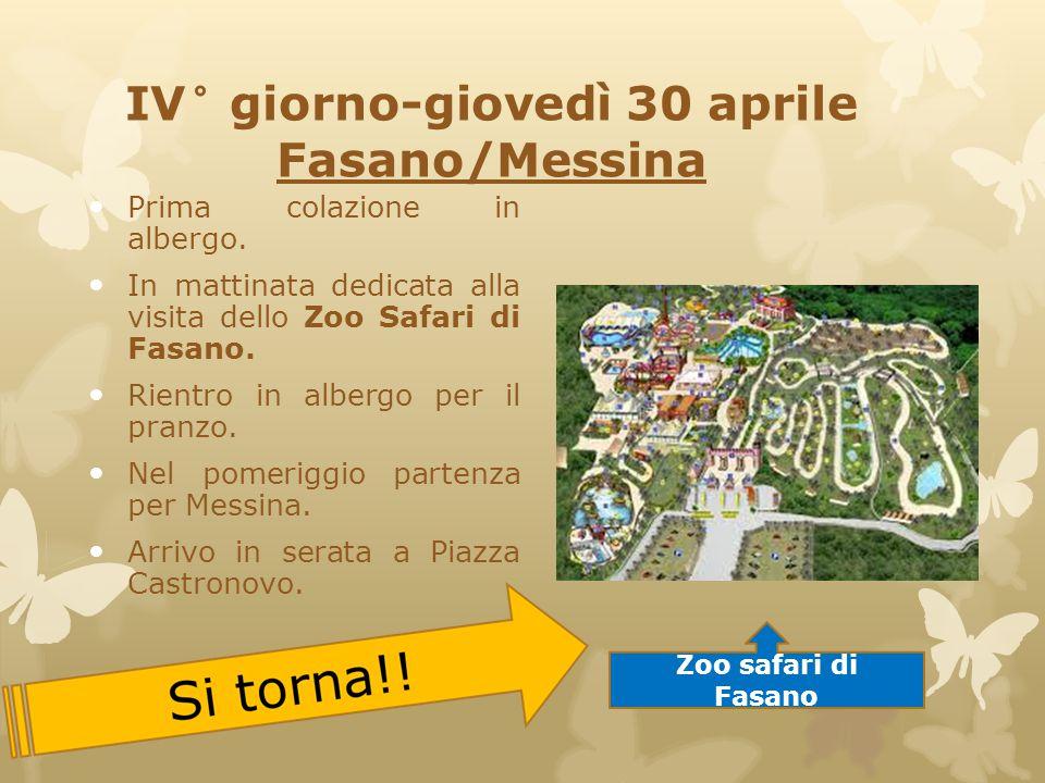 IV° giorno-giovedì 30 aprile Fasano/Messina Prima colazione in albergo. In mattinata dedicata alla visita dello Zoo Safari di Fasano. Rientro in alber