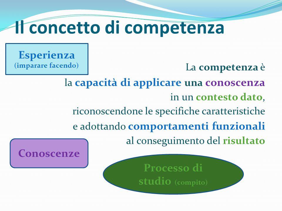 Il concetto di competenza La competenza è la capacità di applicare una conoscenza in un contesto dato, riconoscendone le specifiche caratteristiche e