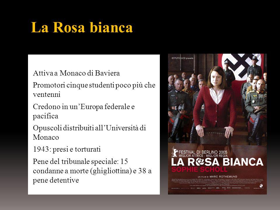 La Rosa bianca Attiva a Monaco di Baviera Promotori cinque studenti poco più che ventenni Credono in un'Europa federale e pacifica Opuscoli distribuiti all'Università di Monaco 1943: presi e torturati Pene del tribunale speciale: 15 condanne a morte (ghigliottina) e 38 a pene detentive