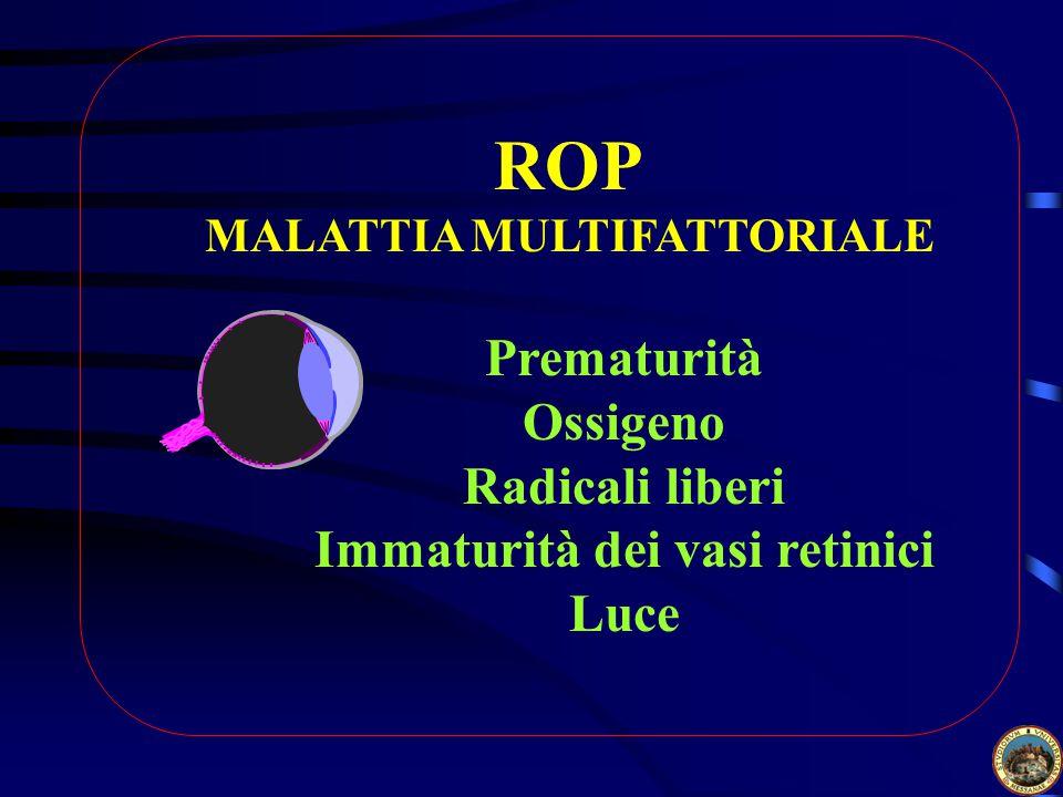 ROP MALATTIA MULTIFATTORIALE Prematurità Ossigeno Radicali liberi Immaturità dei vasi retinici Luce