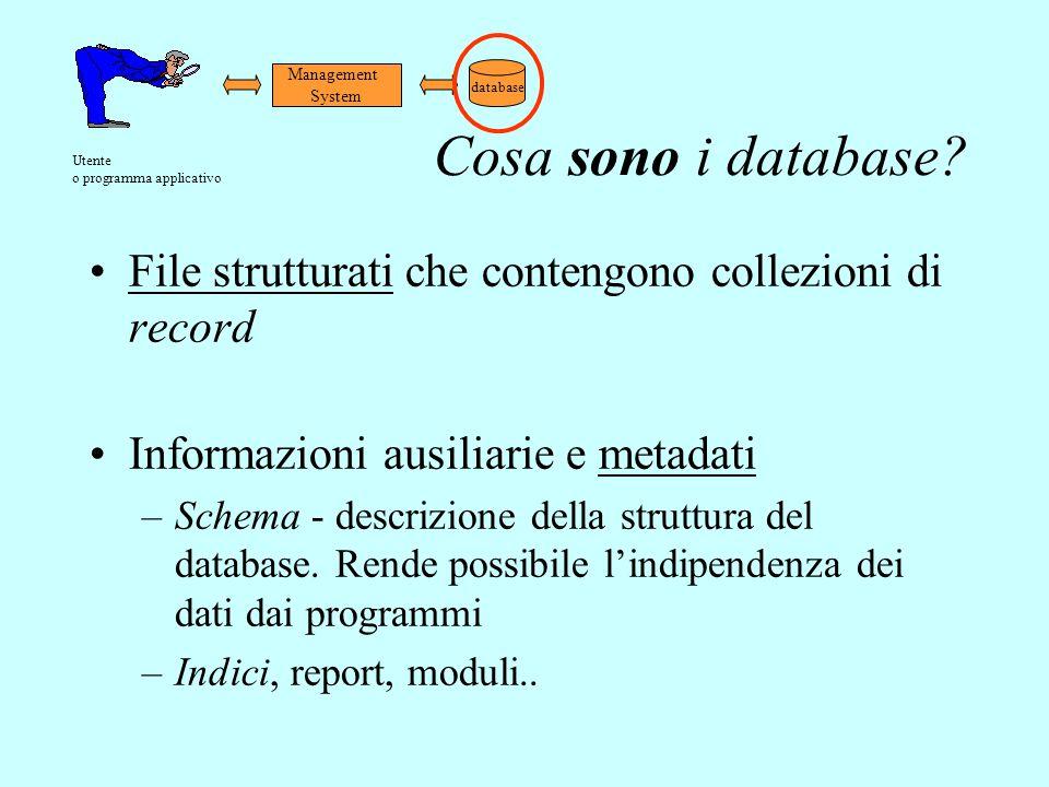 Cosa sono i database? File strutturati che contengono collezioni di record Informazioni ausiliarie e metadati –Schema - descrizione della struttura de