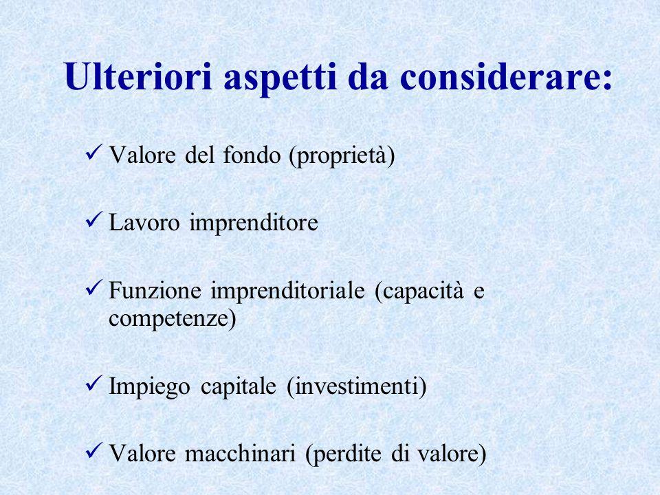 Ulteriori aspetti da considerare: Valore del fondo (proprietà) Lavoro imprenditore Funzione imprenditoriale (capacità e competenze) Impiego capitale (