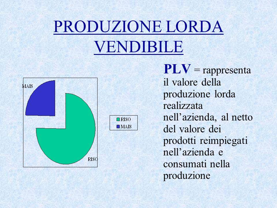 PRODUZIONE LORDA VENDIBILE PLV = rappresenta il valore della produzione lorda realizzata nell'azienda, al netto del valore dei prodotti reimpiegati nell'azienda e consumati nella produzione