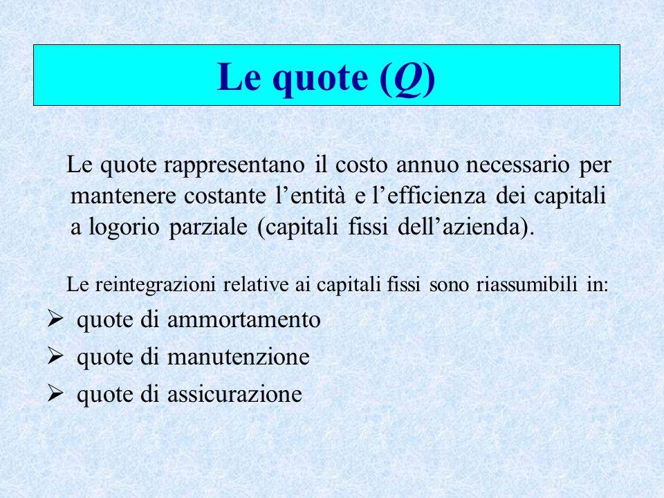 Le quote (Q) Le quote rappresentano il costo annuo necessario per mantenere costante l'entità e l'efficienza dei capitali a logorio parziale (capitali fissi dell'azienda).