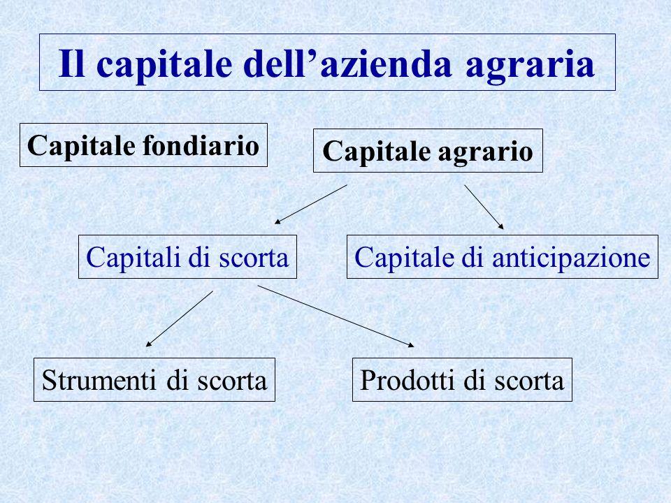 Capitale fondiario Capitale agrario Capitali di scorta Strumenti di scorta Capitale di anticipazione Prodotti di scorta Il capitale dell'azienda agraria