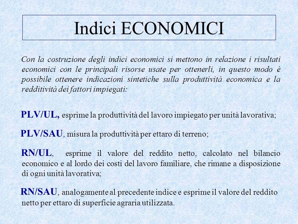Indici ECONOMICI Con la costruzione degli indici economici si mettono in relazione i risultati economici con le principali risorse usate per ottenerli, in questo modo è possibile ottenere indicazioni sintetiche sulla produttività economica e la redditività dei fattori impiegati: PLV/UL, esprime la produttività del lavoro impiegato per unità lavorativa; PLV/SAU, misura la produttività per ettaro di terreno; RN/UL, esprime il valore del reddito netto, calcolato nel bilancio economico e al lordo dei costi del lavoro familiare, che rimane a disposizione di ogni unità lavorativa; RN/SAU, analogamente al precedente indice e esprime il valore del reddito netto per ettaro di superficie agraria utilizzata.