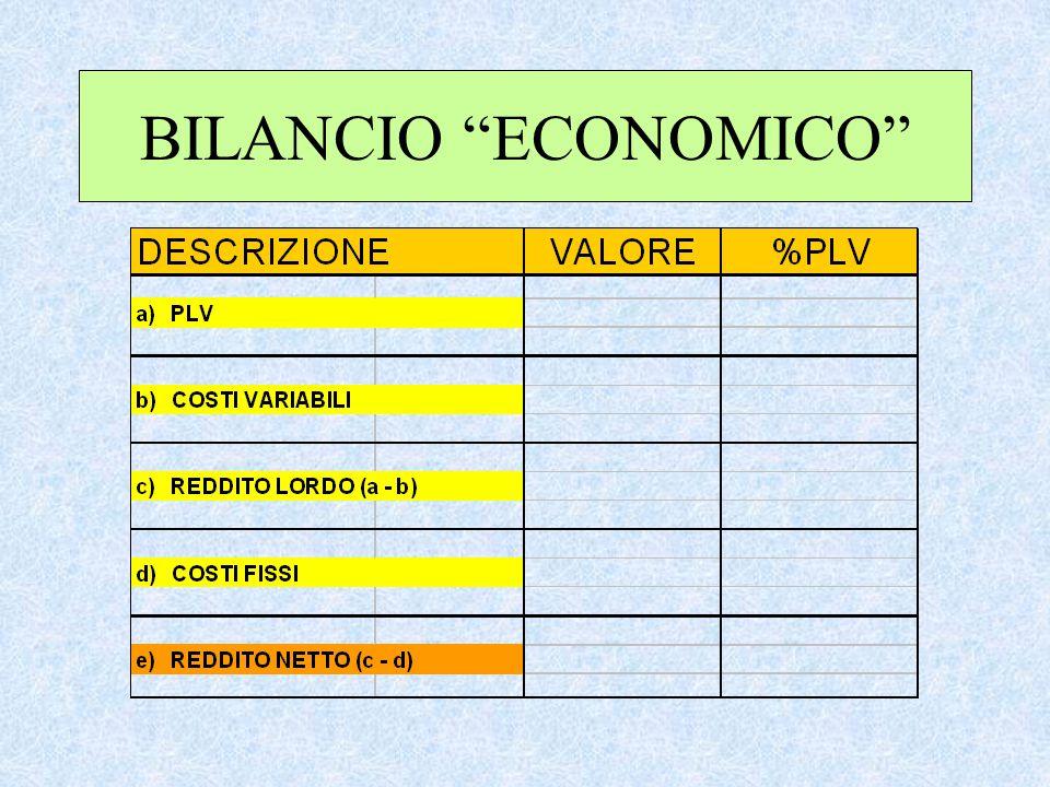 """BILANCIO """"ECONOMICO"""""""