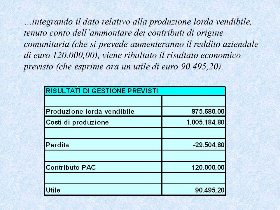 …integrando il dato relativo alla produzione lorda vendibile, tenuto conto dell'ammontare dei contributi di origine comunitaria (che si prevede aumenteranno il reddito aziendale di euro 120.000,00), viene ribaltato il risultato economico previsto (che esprime ora un utile di euro 90.495,20).