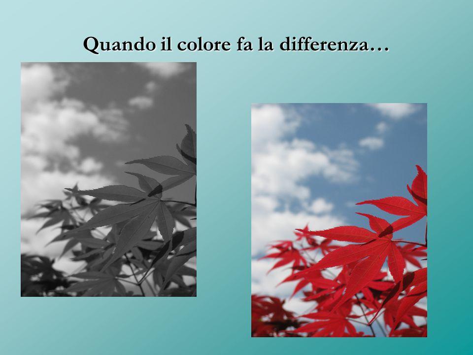 Quando il colore fa la differenza…