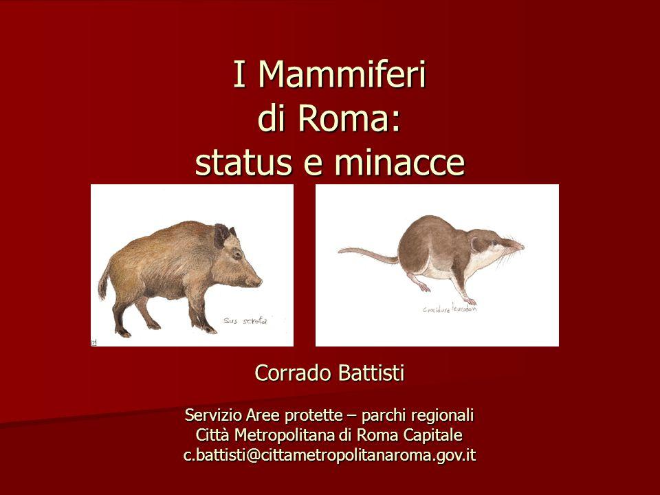 I Mammiferi di Roma: status e minacce Corrado Battisti Servizio Aree protette – parchi regionali Città Metropolitana di Roma Capitale c.battisti@citta