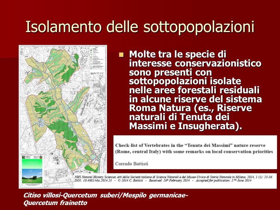 Isolamento delle sottopopolazioni Molte tra le specie di interesse conservazionistico sono presenti con sottopopolazioni isolate nelle aree forestali