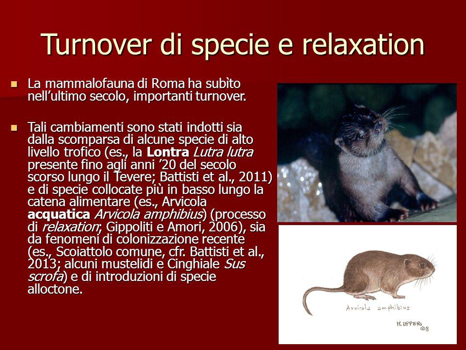 Turnover di specie e relaxation La mammalofauna di Roma ha subìto nell'ultimo secolo, importanti turnover. La mammalofauna di Roma ha subìto nell'ulti