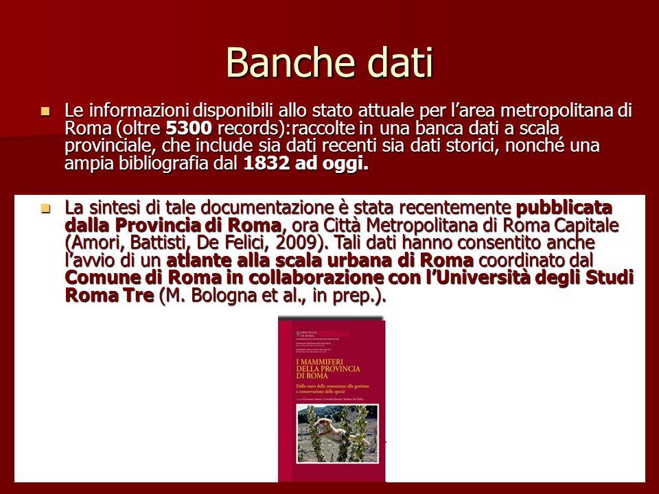 Banche dati Le informazioni disponibili allo stato attuale per l'area metropolitana di Roma (oltre 5300 records):raccolte in una banca dati a scala pr