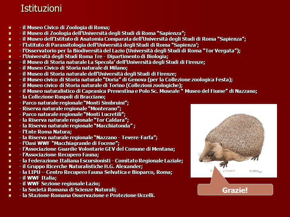 """Istituzioni - il Museo Civico di Zoologia di Roma; - il Museo Civico di Zoologia di Roma; - il Museo di Zoologia dell'Università degli Studi di Roma """""""