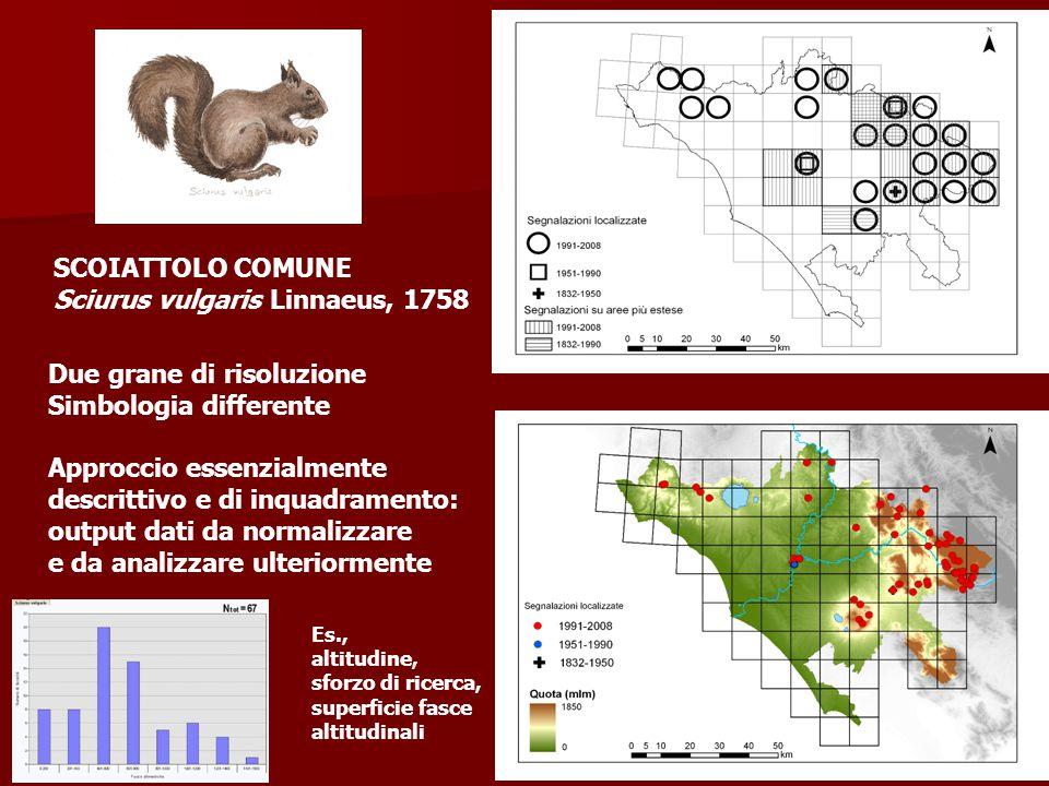 SCOIATTOLO COMUNE Sciurus vulgaris Linnaeus, 1758 Due grane di risoluzione Simbologia differente Approccio essenzialmente descrittivo e di inquadramen