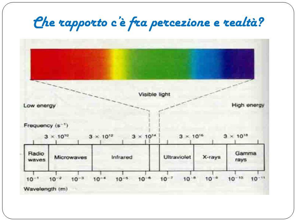 Che rapporto c'è fra percezione e realtà?