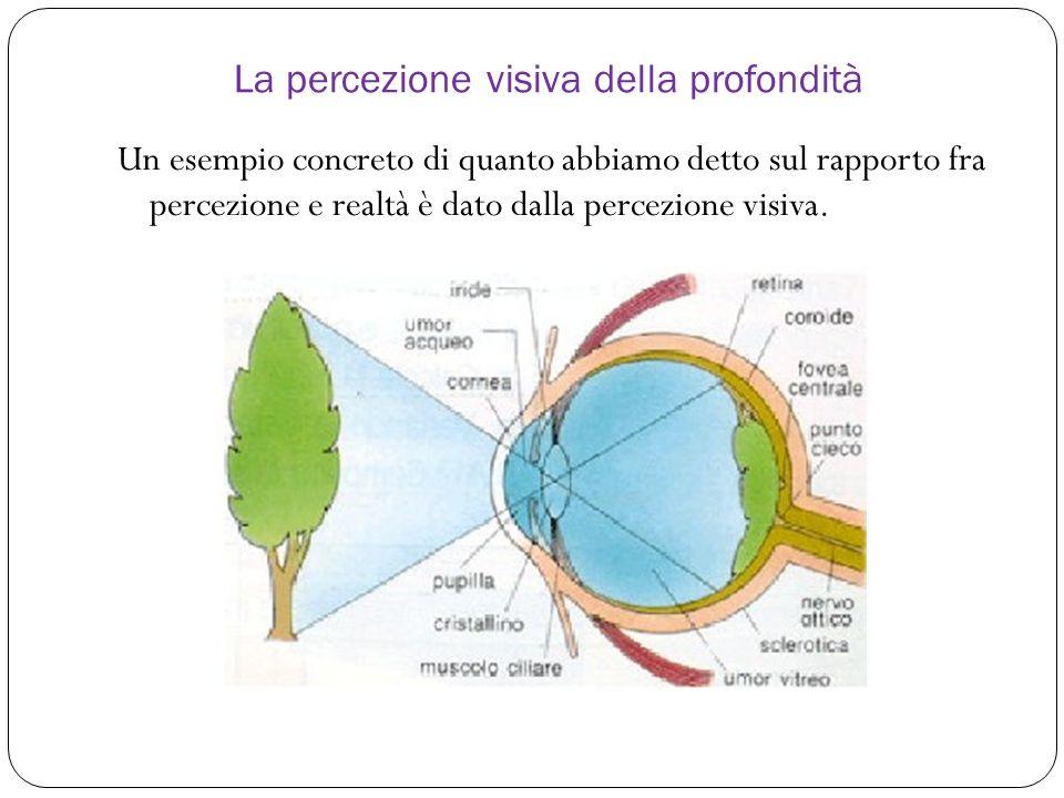 Un esempio concreto di quanto abbiamo detto sul rapporto fra percezione e realtà è dato dalla percezione visiva.
