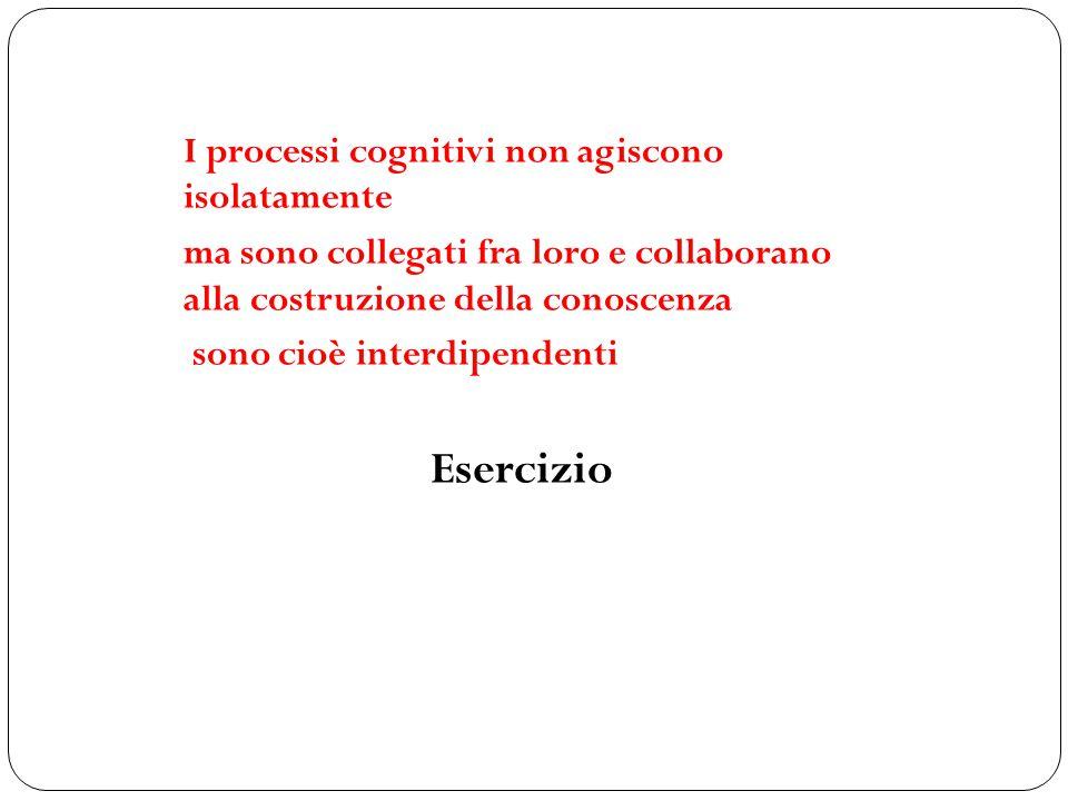 I processi cognitivi non agiscono isolatamente ma sono collegati fra loro e collaborano alla costruzione della conoscenza sono cioè interdipendenti Esercizio