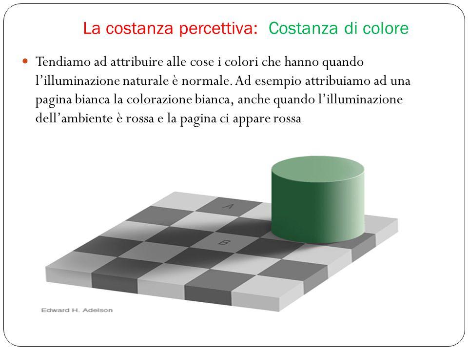 La costanza percettiva: Costanza di colore Tendiamo ad attribuire alle cose i colori che hanno quando l'illuminazione naturale è normale.