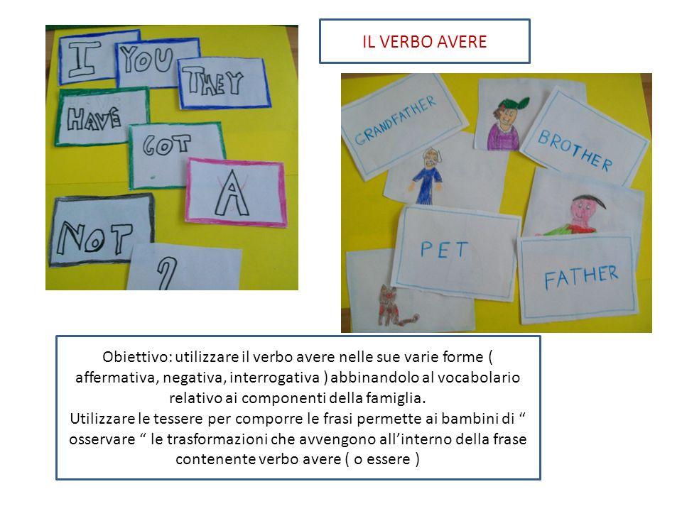 Obiettivo: utilizzare il verbo avere nelle sue varie forme ( affermativa, negativa, interrogativa ) abbinandolo al vocabolario relativo ai componenti