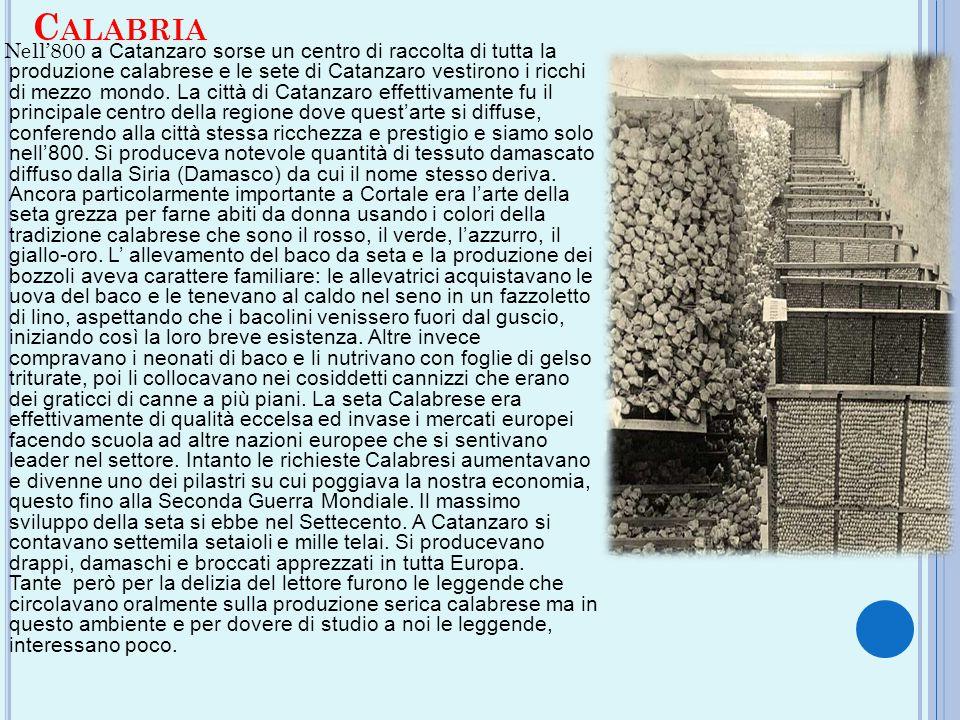 C ALABRIA Nell'800 a Catanzaro sorse un centro di raccolta di tutta la produzione calabrese e le sete di Catanzaro vestirono i ricchi di mezzo mondo.
