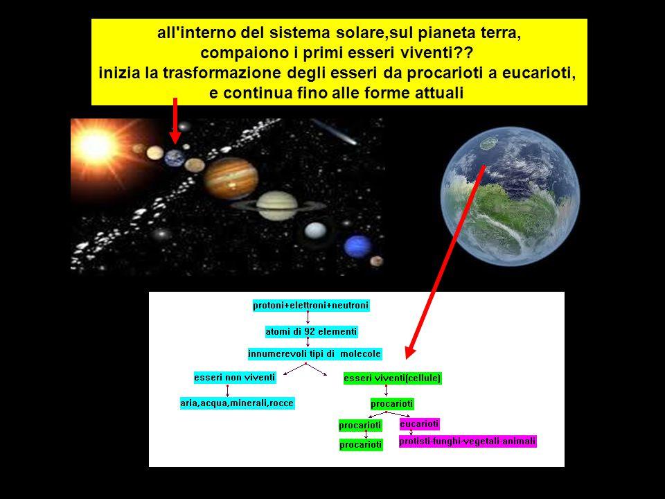 all interno del sistema solare,sul pianeta terra, compaiono i primi esseri viventi?.