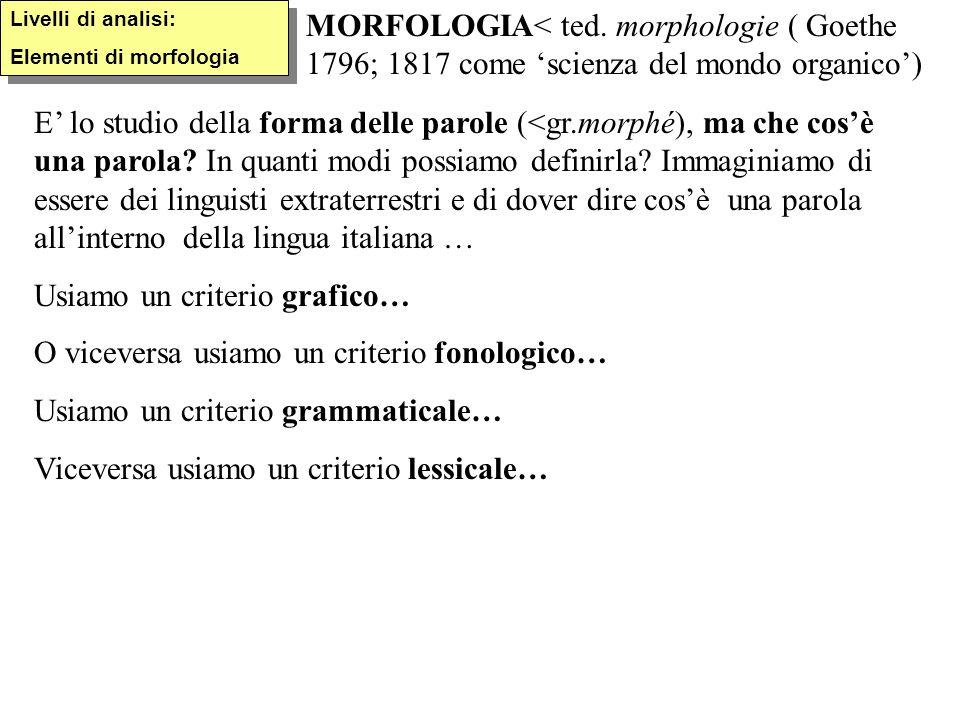 Livelli di analisi: Elementi di morfologia Livelli di analisi: Elementi di morfologia MORFOLOGIA< ted. morphologie ( Goethe 1796; 1817 come 'scienza d